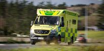 Baby seriously injured in Dunedin dog attack
