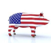 CME: Hog Market Deflates... Again