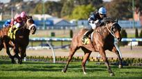 The Cleaner ready to return to his best at his favourite track