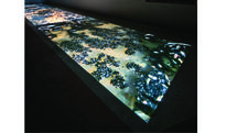Video art exhibition takes viewers on real and imagined journeys of life