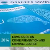 Fisheries crime: bringing to light the perfect storm of illegal activities in the fishing sector