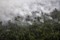 Malaysia proposes to amend environment act to curb haze from forest fires