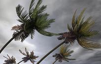 El Nino, La Nina, Volatility and Options