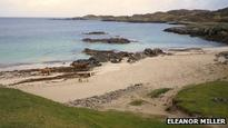 Man dies after Lewis diving accident