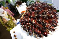 India's import tax cut to spur demand, support palm oil price
