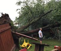 Quebec City microburst knocks down trees, damages property