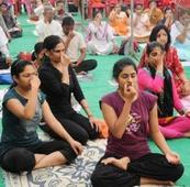 Govt schoolchildren to celebrate Yoga Day