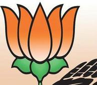 BJP sparkles in state municipal council polls