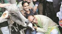 Shivraj Singh Chouhan wants suggestions on better use of cow milk, urine