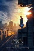 Fantastic Beasts And Where To Find Them: New Movie Poster Spotlights Eddie Redmayne As Newt Scamander