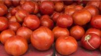 Nigerian state in 'tomato emergency'
