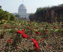 Feast your eyes with colours at the Mughal Gardens, it opens for all on 12 Feb