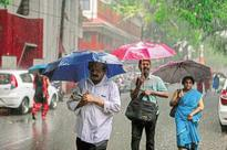 35% surplus rainfall in week ended 6 July: IMD