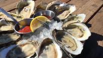 WATCH:  Oyster Farming From the Nursery to the Table
