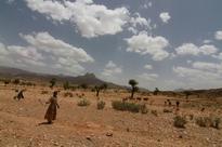 El Nino: Ethiopia making 'every effort' to mitigate devastating drought as 10 million at risk