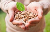 Veolia Energy Hungary buys biomass plant
