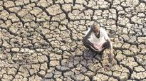 Tamil Nadu wants Rs 40,000 crore for providing relief to farmers