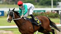 Randwick Saturday preview: Raw Impulse set to do the Dance of Heroes