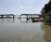 Congress alleges scam in Goa bridge construction