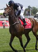 2016 Melbourne Cup - Ryan Moore Booked For Bondi Beach