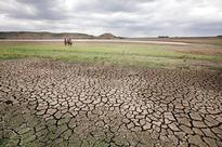 Tamil Nadu declared a drought-hit state after months by the govt