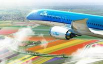 KLM Airlines to suspend service in Cairo on 8 January