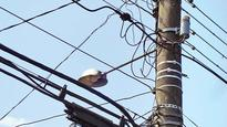 Discoms go all out to prevent electrocutions in monsoon