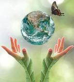 A different paradigm for CSR