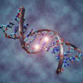 Scientists cut HIV genes from live animals using genetic scissors