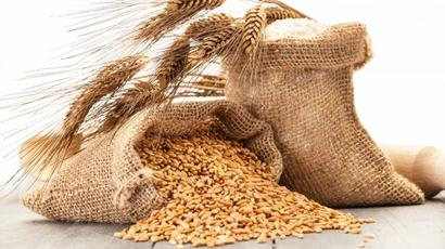 Govt buys Rs 3,077cr worth kharif urad and moong at MSP so far