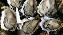 Christmas and Easter oysters shucked from the menu