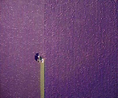 Sky high shots: Dronestagram announces its winners
