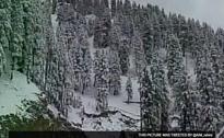 Rain, Fresh Snowfall Break Dry Spell In Kashmir