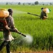 Unions join the fight to ban glyphosate in the European Union