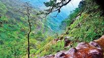 India's smallest hill station to mark biodiversity day for promoting conservation