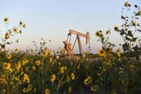 Goldman sees more oil swings that could drag p... A pump jack is seen near sunflowers in Guthrie, Oklahoma in a September 15, ...