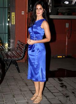 Salman, Katrina celebrate X'Mas, TZH hit