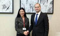 The Georgian Foreign Minister has met the Member of Romanian Parliament, President of the European Affairs Committee