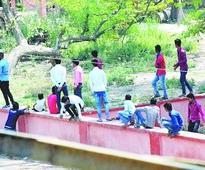 Drive to curb Bihar's bane