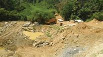 Karnataka: FSI to assess tree felling for Yettinahole