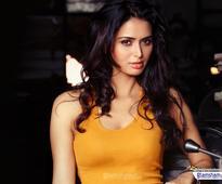 LAAL RANG actress Meenakshi Dixit: Randeep Hooda's polished act let my performance flow with him - News