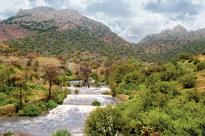 Saudi pushes ahead with plans to turn Taif in...