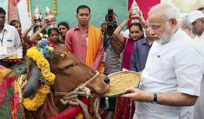 Modi's mantri plans Project Cow like Project Tiger