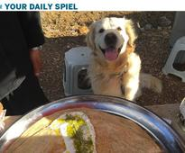 Your daily spiel for Wednesday, Aug. 3