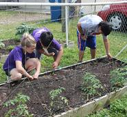 Cash for Classroom Creativity in Agriculture August 19, 2016Florida Farm Bureau will award up to $20,000 in grant money for classroom projects