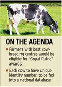 Govt marks Rs. 500 cr to raise strictly desi cows