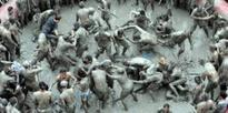 South Korea's Boryeong Mud Festival starts from July