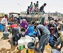 Apex court raps Guj over drought issue