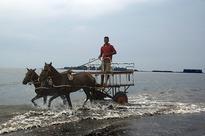 12 best beaches of Maharashtra