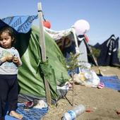 Syrian Refugees Help Nab Suspected War Criminals